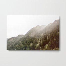 Pine Covered Mountain Fog Metal Print