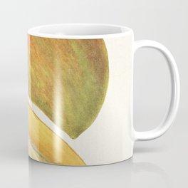 Mangoes (Mangifera Indica) (1908) by Amanda Almira Newton Coffee Mug