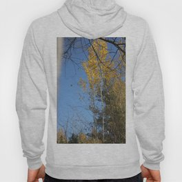Autumn is a wonderful time! Hoody