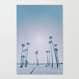 summer dissipation Canvas Print