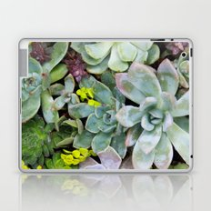 Succulent Carpet Laptop & iPad Skin