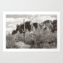 Saguaro in black and white Art Print