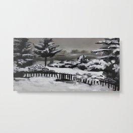 Winter, snow, nature Metal Print
