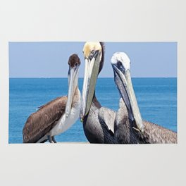 Larry, Curly and Moe Pelicans Rug