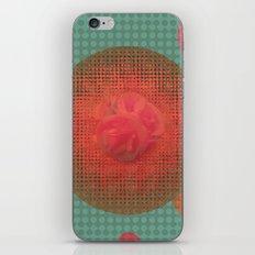 dreamy 2 iPhone & iPod Skin