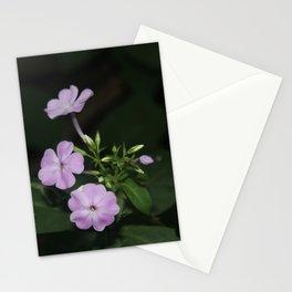 Shine Some Light On It Stationery Cards