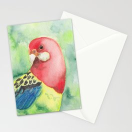 Eastern Rosella Watercolour Stationery Cards