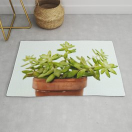 The Unidentified Houseplant Rug