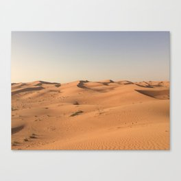 Day In The Desert Canvas Print