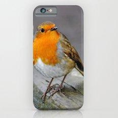 Cheeky Robin  iPhone 6s Slim Case
