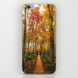 Acadia Autumn iPhone Skin