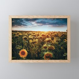 Sunflowers Framed Mini Art Print