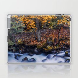 Autumn River Laptop & iPad Skin