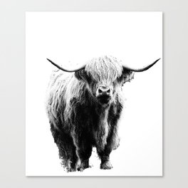 Newspaper Print Style Highland Cow. Scotland, Bull, Horns. Canvas Print