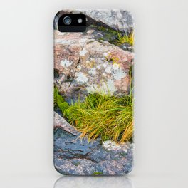 Artist Point Trail, Grand Marais, Minnesota 14 iPhone Case
