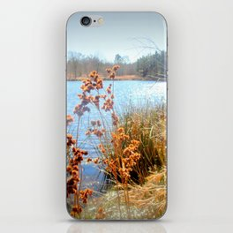 Peaceful Nature iPhone Skin