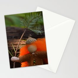 This is MY forest!  Stationery Cards