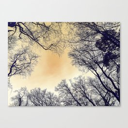 Infrared Forest Canvas Print