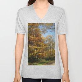 Autumnal Path Unisex V-Neck