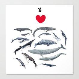 I love whales design Canvas Print