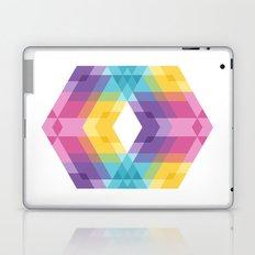 Fig. 019 Laptop & iPad Skin