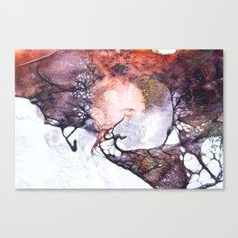Fossils 64 Canvas Print