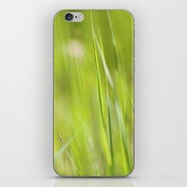 Summer Green iPhone Skin