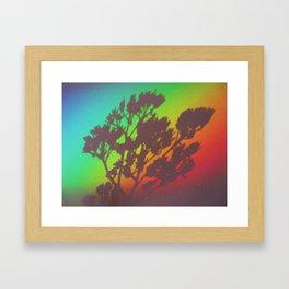 Rainbow's End Framed Art Print