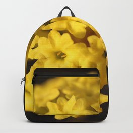 Perfect Form Backpack