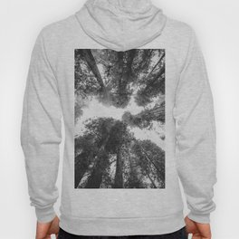 Into the Mist - Black and White Nature Photography Hoody