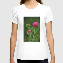 Prickly beauty T-shirt
