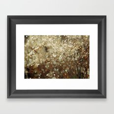 Autumn dew Framed Art Print