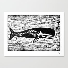 Skeleton of a cachalot Canvas Print