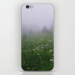 Valley of Heaven iPhone Skin