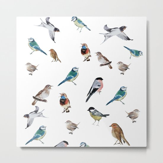I love birds Metal Print