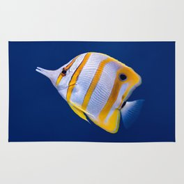 Copperband butterfly fish Rug