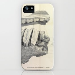 The Zoology of the Voyage of H.M.S. Beagle 1840 - Fossil Mammalia - Jaw and Teeth of a Taxodon iPhone Case