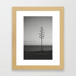 Cascais 3 Framed Art Print