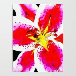 Flower - Yellow and Red Poster
