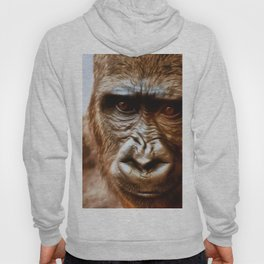 COMPASSION OF THE GORILLA Hoody