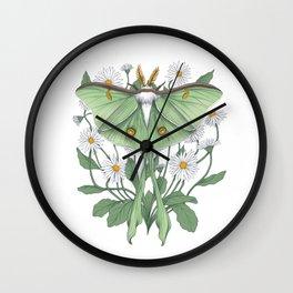 Metamorphosis - Luna Moth Wall Clock