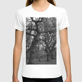 Oak Trees on the March T-shirt