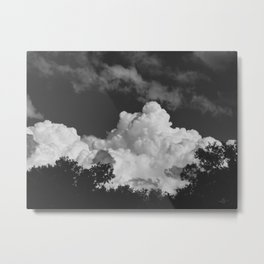 152 | austin Metal Print