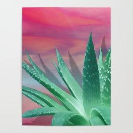 """Pastel Succulent Pink Sunset"" Poster"