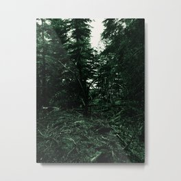 In the forest, the trees Metal Print