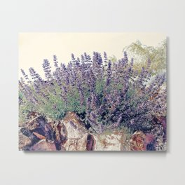 Lavender And Stone Metal Print