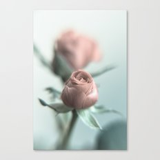 A Pink Rose for your Sweetheart... Canvas Print