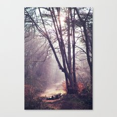 Wanderings Canvas Print