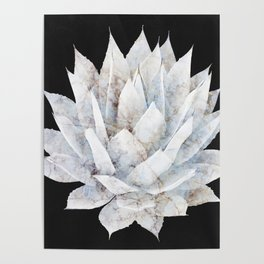 Agave White Marble Poster