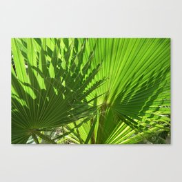 Shades of Palm Leaves Canvas Print